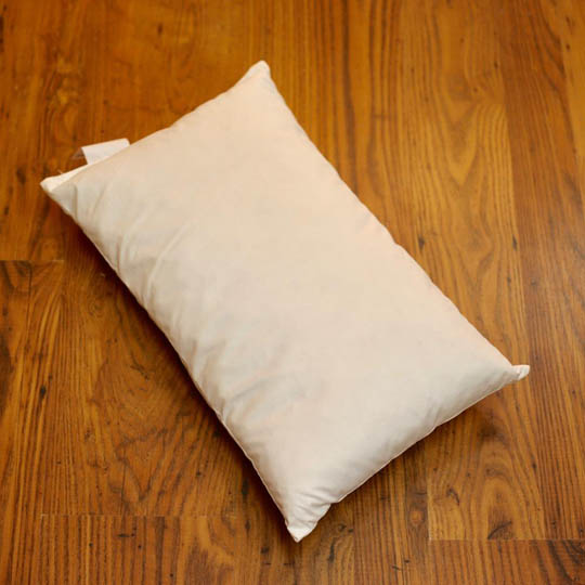 Fru Zippe Pillow Filling different sizes 30 x 50